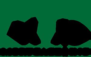 VIP Mortgage logo