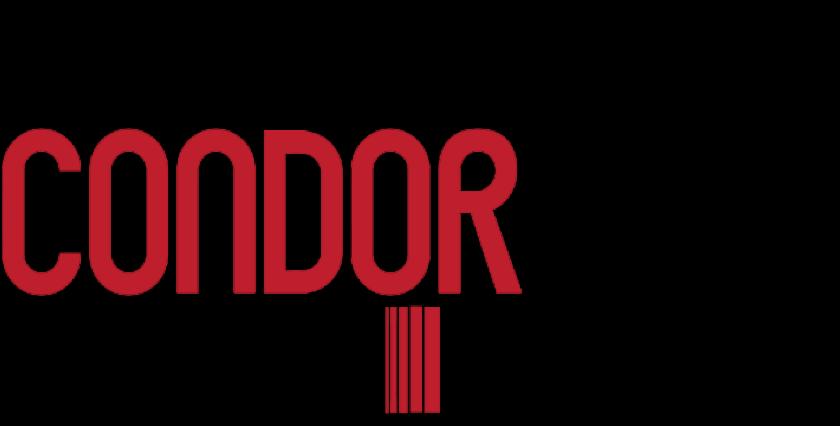 Condor Express logo